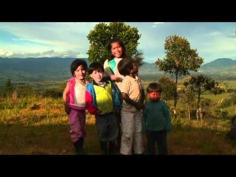 cofanes-ingas contra megamineria-colombia