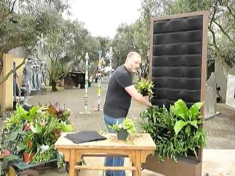 Hướng dẫn kỹ thuật trồng cây cho vườn trên tường