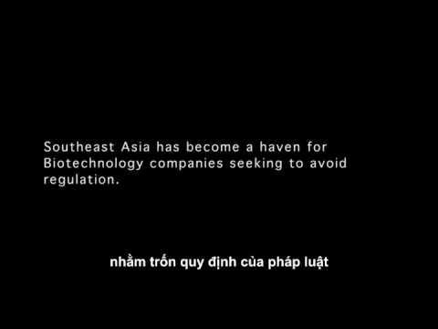[HD Vietsub] Biệt Đội Chống Zombie (Part 1) - Phim Hành Động Hay