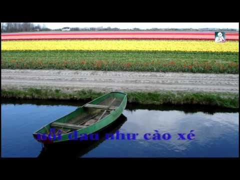 karaoke_Bạc Tình_Đàm Vĩnh Hưng