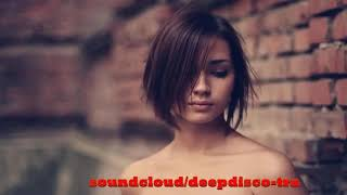 The Best Of Vocal Deep House Nu Disco 2013 (2 Hour Mixed By Zeni N)