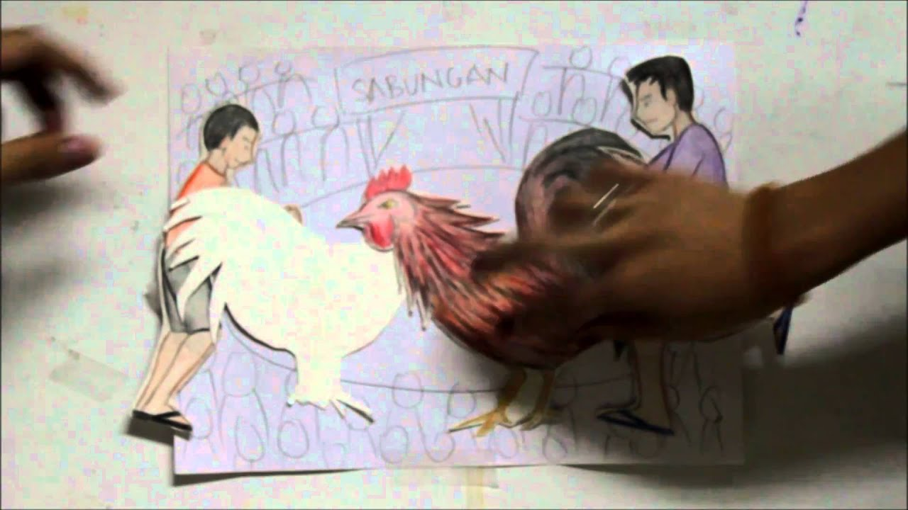 summary of my brothers peculiar chicken My brother's peculiar chicken by alejandro roces story board/ story  plot b  complication they couldn't tell whether the chicken is a hen or.