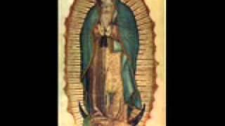 Saul Morales- Virgen De Guadalupe 1/5