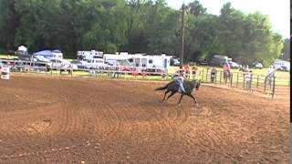 [Barrel Racing Amazing Save - Shawna Lucas] Video