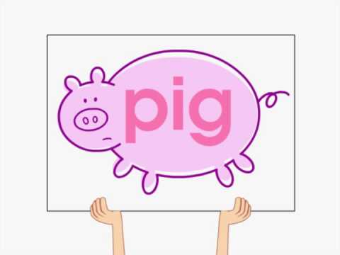 The Big Pig Song