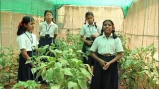 Conversion of school campus into an Environment Friendly Zone: Kendriya Vidyalaya IISc B'lore view on youtube.com tube online.