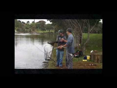 Dicas para a pesca de Dourado no Fishing Park com Salsicha Flutuante by Thiago