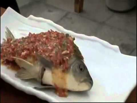 Eating live fish youtube for Live fish online