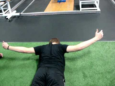 Team Training (Tri-Set: horizontal pull, prone Y's/T''s, side plank