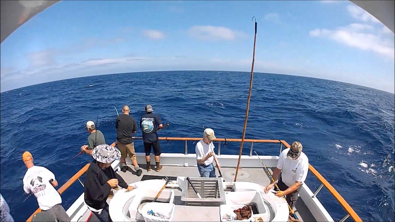 San Diego Offshore Fishing Seaforth Landing Sept 2013