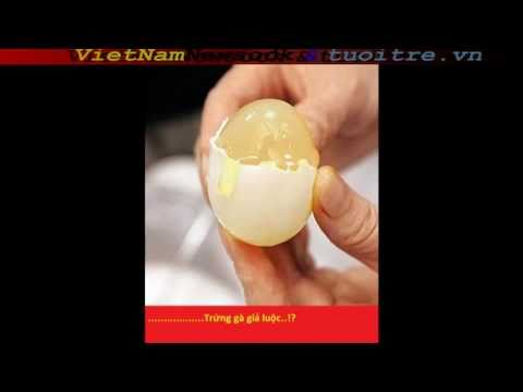 Made in China 1: trứng gà giả [fake eggs]