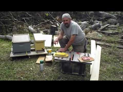 BEEHIVE QUEEN Right Queenless Virgin Cell Marking Color System Beekeeping GA. Beekeeper John Pluta