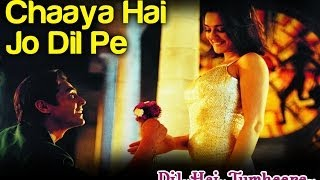 Chaaya Hai Jo Dil Pe Dil Hai Tumhaara Preity Zinta