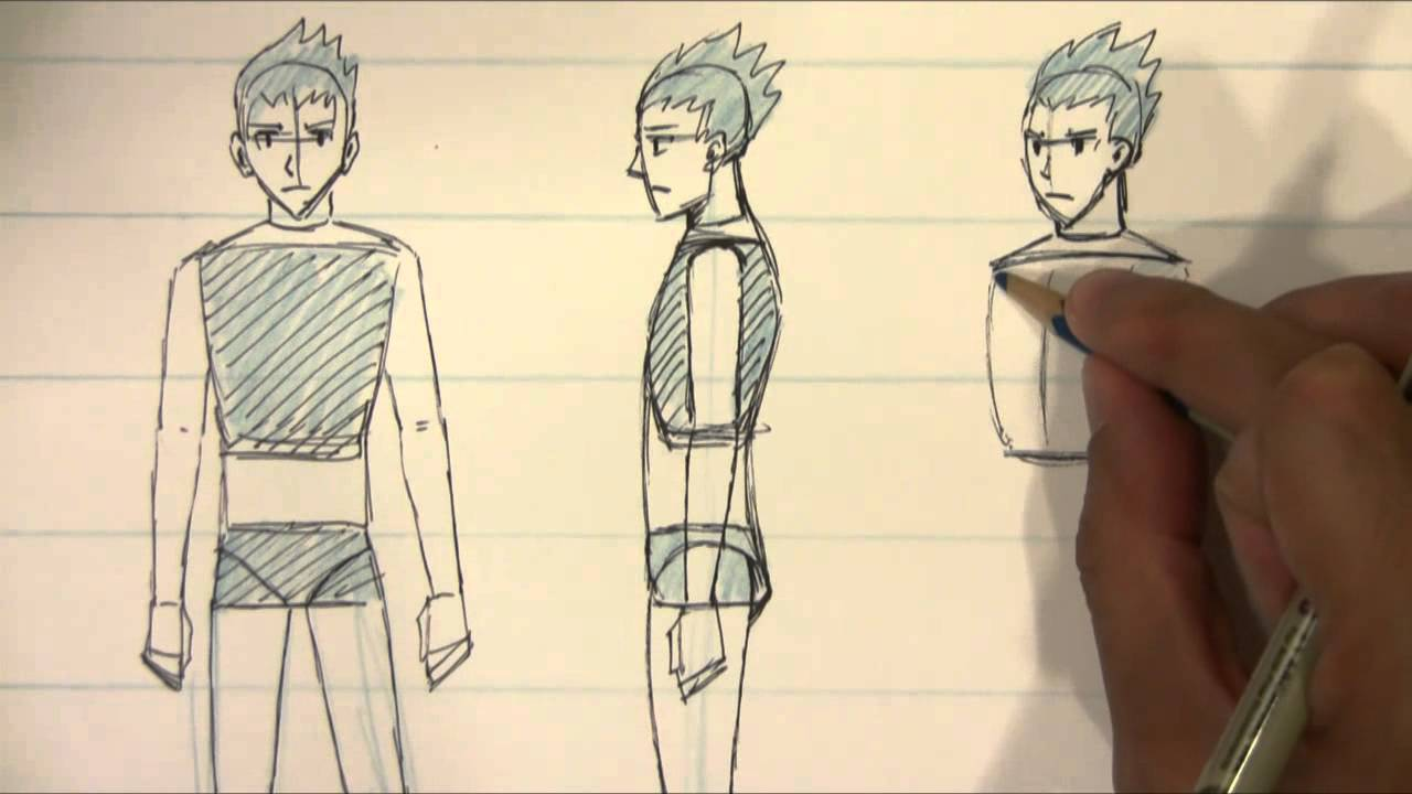 Anime Characters Side View : How to draw different views for male body proportions