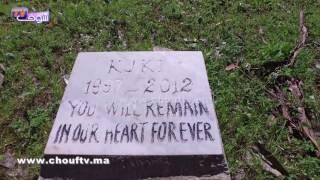 فقط في طنجة..مقابر خاصة بالكلاب (فيديو)  