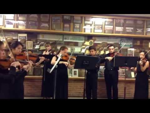 Once Upon a Dream performed by the Garden City High school Chamber Orchestra