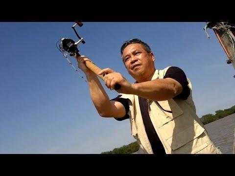 Câu Cá Bông Lau - Chuyến TruyTìm Trứng Bông Lau của Trần Hiệp