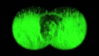 GEICO Night Vision Commercial Happier Than An Antelope