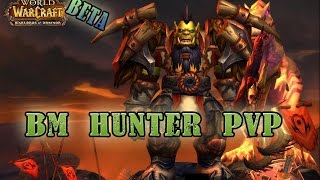 WoW Warlords Of Draenor Level 100 Hunter PVP 6.0.2
