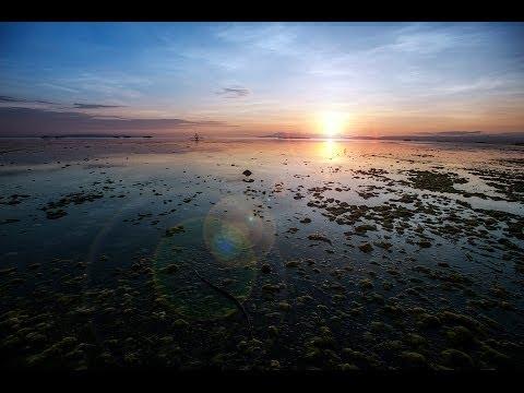 Philippines Bohol 2014