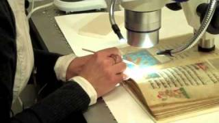 picture of Book Conservator