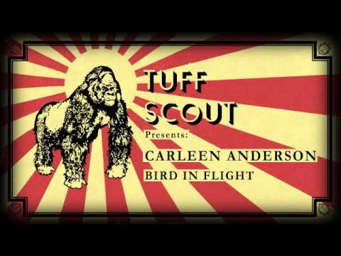 01 Carleen Anderson - Bird In Flight [Tuff Scout]