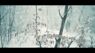 Kien91 | Quand je repense