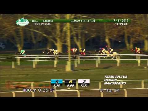 Vidéo de la course PMU PREMIO CLASICO FORLI