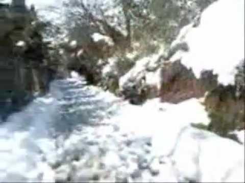 ALGERIE,MILIANA ville des cerises sous la NEIGE