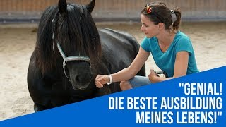 Coaching mit Pferden - Ausbildung zum pferdeunterstützten Coach Schweiz, Österreich, Stuttgart, Rostock