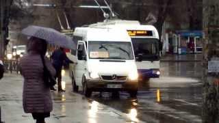 Microbuzele continuă să oprească unde vor… călătorii