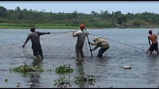 Bắt cá mùa nước cạn - cái lưới vây này đáng sợ thật