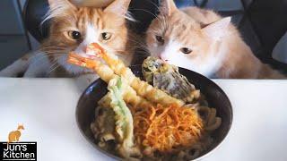 Tempura Udon Noodles