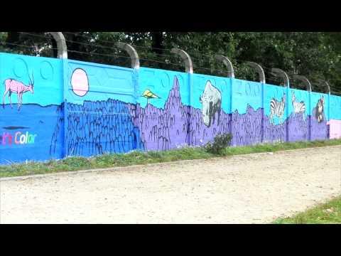 Dulux - Let's Color - wrocławskie zoo