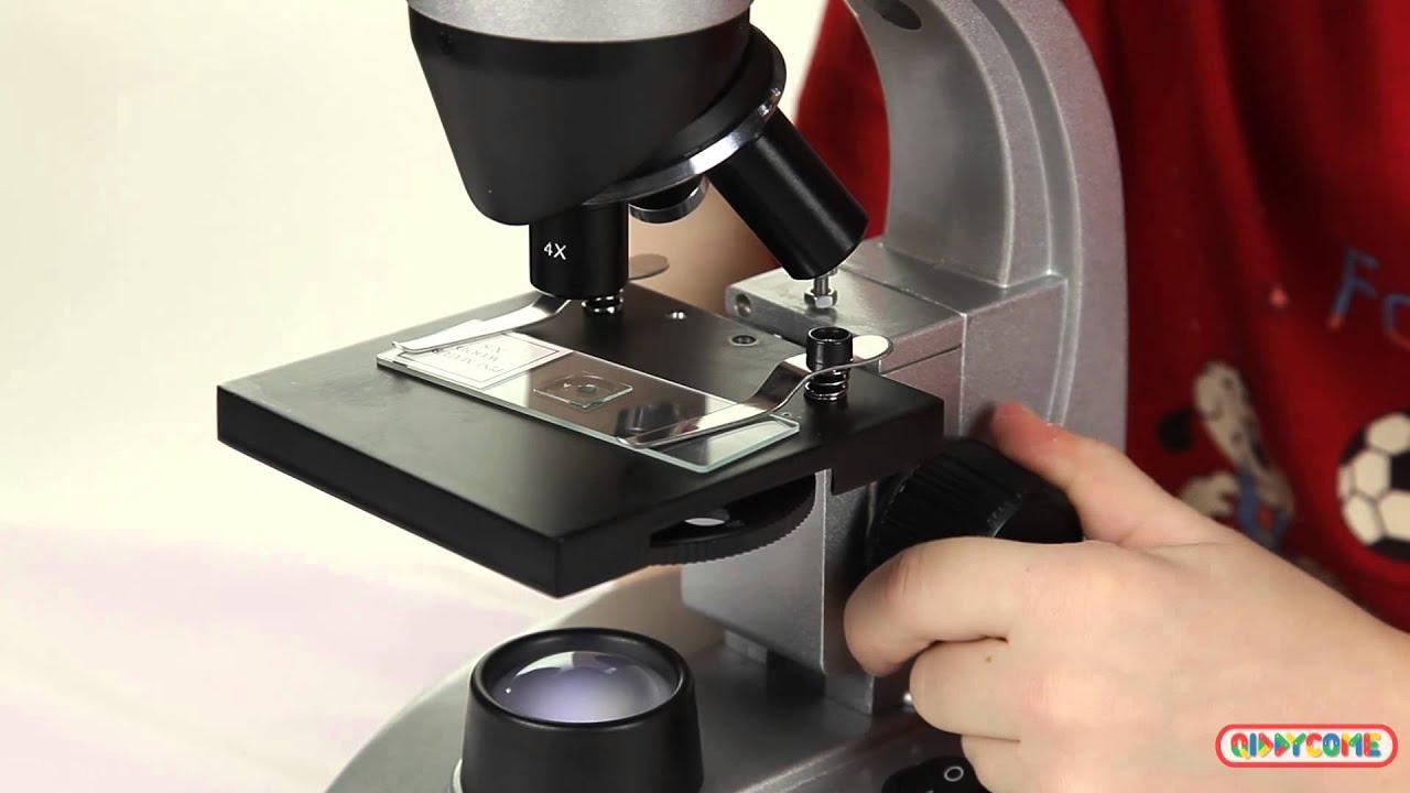 Микроскопы для домашних условиях 296