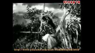 Lanchang Kuning (1962 ) Full Movie
