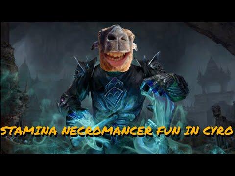 ESO PvP - Funny Stam Necro Footage