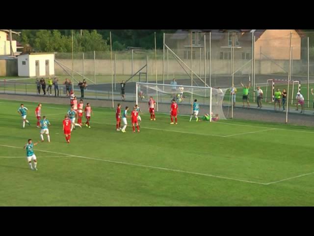 Рух - Арсенал (2:3, гол Олега Шептицького)