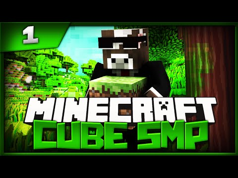 Minecraft Cube SMP - Episode 1 - Welcome To The Town (Minecraft The Cube SMP)