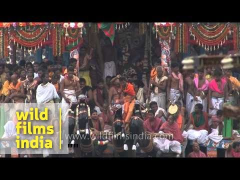 Devotees throng around the chariots - Jagannath Rath Yatra, Puri