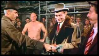 Hard Times Ein Stahlharter Mann (1975 Film) Online Watch