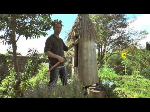 Log Hive Beekeeping - Natural Beekeeping Trust - Zeidler Tree Beekeeping