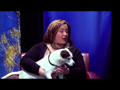 Michelle Ryan on Coconino Humane Association