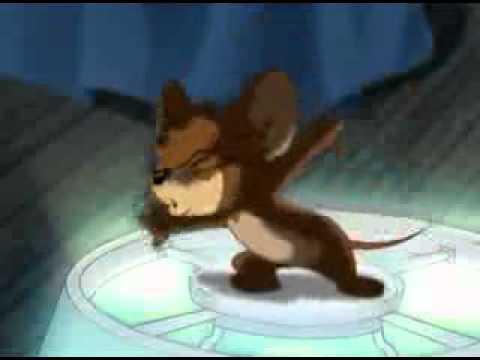 Tom si Jerry desene animate in romana episodul Tigrul motan · Tom si