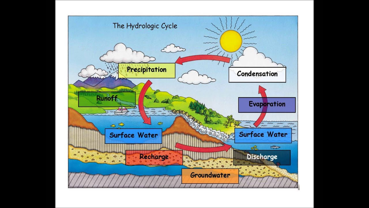 hydrological cycle new calendar template site
