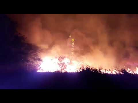 Vídeo Vídeo: Incêndio gigante consome área de vegetação em frente ao shopping Iguatemi
