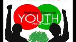 Dhaamsa Qabsaawota Oromoo (Qeerroo Bilisummaa) Bara Haaraa 2014/Finfinnee Oromiyaa
