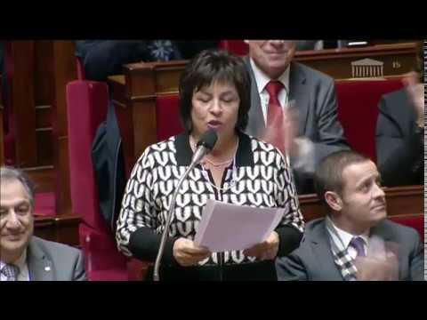Mme Marie-Christine Dalloz - Moratoire sur la taxe carbone