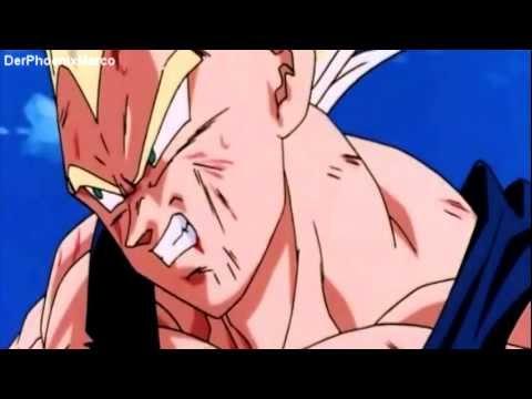 Dragonball Z~Son Goku und Vegeta Fusion~Super-Vegetto
