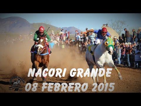 Carreras de Caballos en Nacori Gde. 08 Febrero 2015